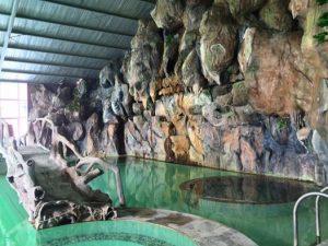 Bể bơi nước khoáng bốn mùa trong nhà kính ! bạn có thể đi Thanh Lâm tắm quanh năm và yên tâm nước trong hồ tắm này luôn luôn nóng ! có khu vực ngồi ngâm và khu vực bơi lội trong hồ.